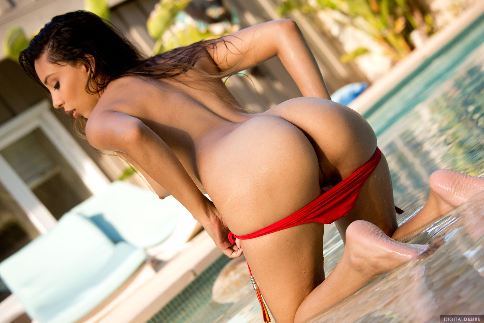 Ass, Brunette, Latina, Long Hair, Oiled and Wet, Outdoors, Panties, Pool, Solo picture featuring Alexis Love
