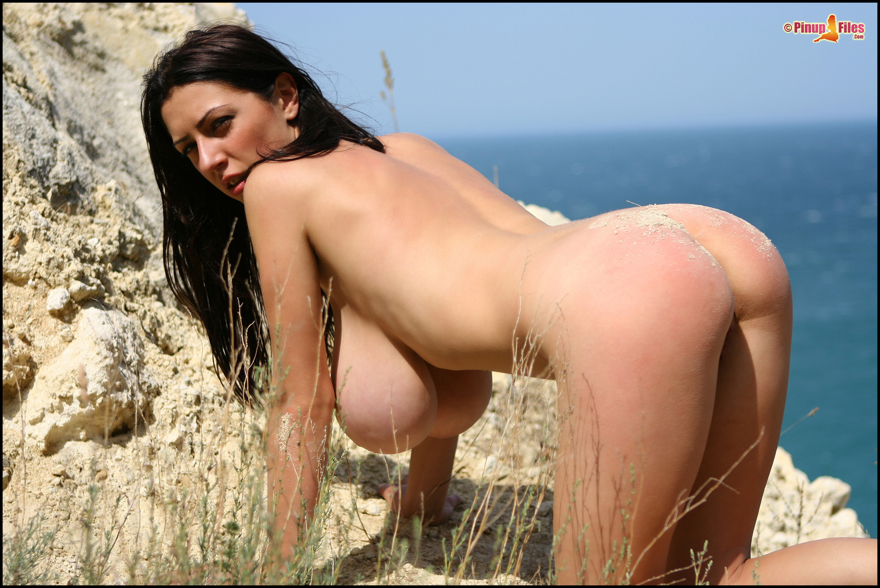 Ass, Beach, Big Tits, Black Hair, Ivory, Long Hair, Outdoors, Solo picture
