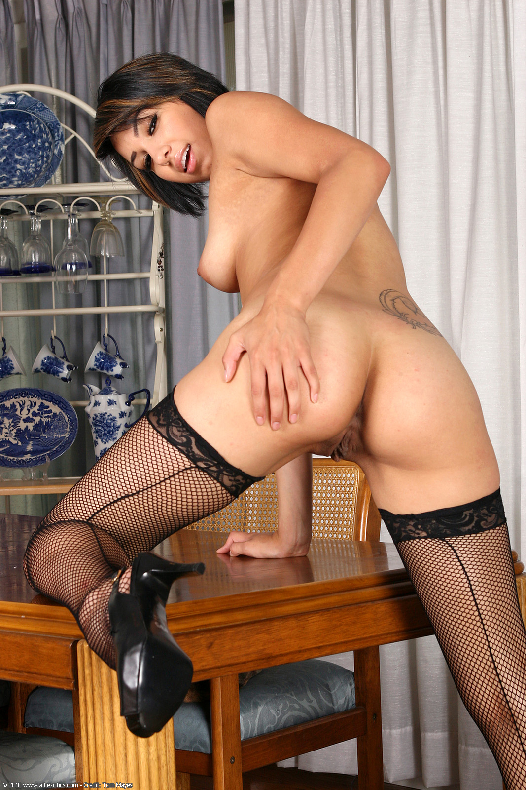 Ass, Brunette, Heels, Latina, Short Hair, Solo, Stockings, Table, Tattoo picture featuring Amarie